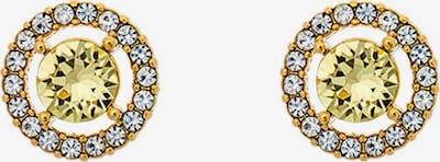 LILY AND ROSE Earrings 'Miss Miranda' in Lemon / Gold / Transparent, Item view