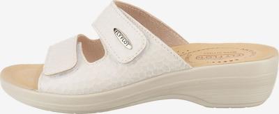 FLY FLOT Pantolette in creme, Produktansicht