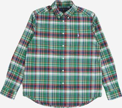 POLO RALPH LAUREN Košulja u mornarsko plava / žuta / zelena / crvena / bijela, Pregled proizvoda