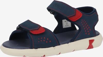 KICKERS Open schoenen in de kleur Nachtblauw / Rood, Productweergave
