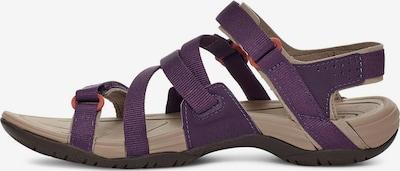 TEVA Sandale in lila, Produktansicht