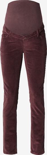 Esprit Maternity Pants in Brown, Item view