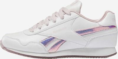 Reebok Classic Sneaker in flieder / rosa / weiß, Produktansicht
