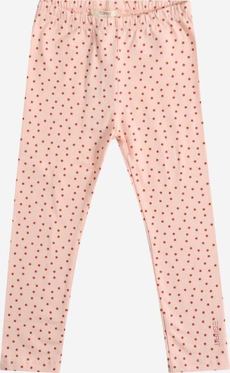 Leggings ESPRIT di colore rosa / rosso sangue, Visualizzazione prodotti