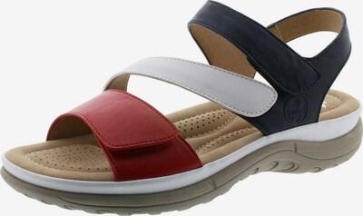 Sandale RIEKER pe albastru / roșu / alb, Vizualizare produs