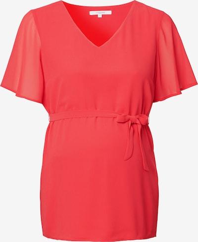 Noppies Bluse ' Deale ' in pink, Produktansicht