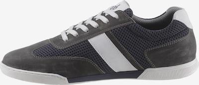 BRUNO BANANI Sneaker in marine / grau / weiß, Produktansicht