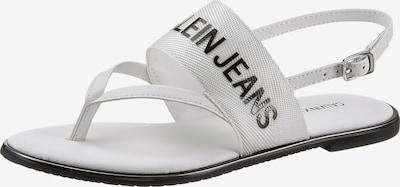 Calvin Klein Zehentrenner in schwarz / weiß, Produktansicht