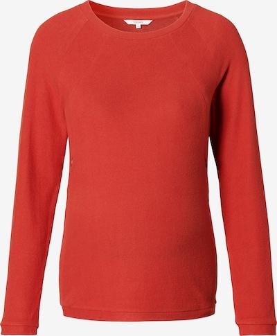 Noppies Shirt 'Alnwick' in rot, Produktansicht