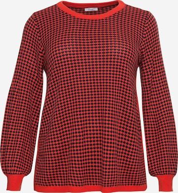 oranžinė SHEEGO Megztinis