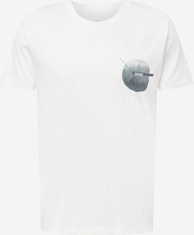 ESPRIT T-shirt i duvblå / grå / vit, Produktvy