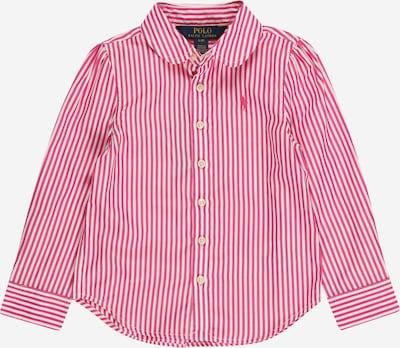 Polo Ralph Lauren Bluse en fuchsia / weiß, Vue avec produit