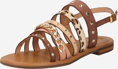 GEOX Sandale in beige / braun, Produktansicht