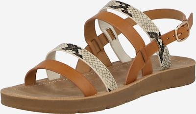CALL IT SPRING Strap sandal 'POWERR' in Beige / Cognac / Black, Item view