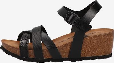 COSMOS COMFORT Sandalen met riem in de kleur Zwart, Productweergave