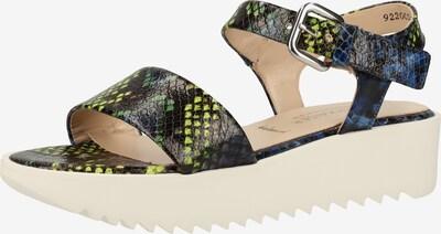 PETER KAISER Sandalen in mischfarben / schwarz, Produktansicht