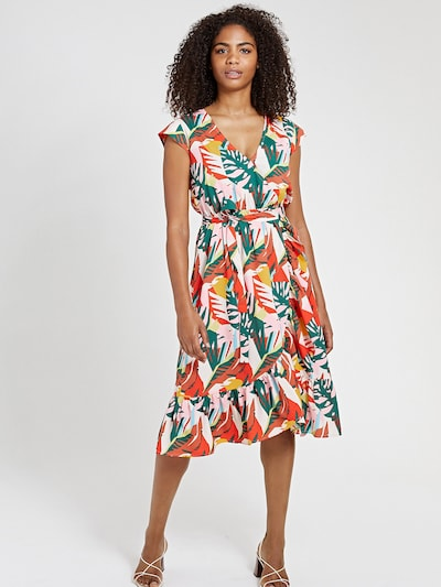 Shiwi Jurk in de kleur Gemengde kleuren, Modelweergave