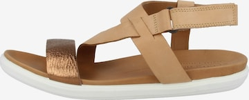 ECCO Sandale ' Simpil ' in Braun