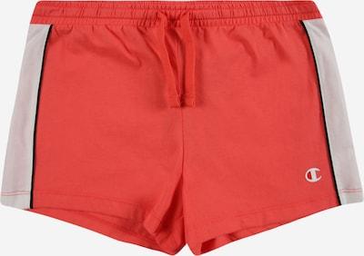 Champion Authentic Athletic Apparel Broek in de kleur Lichtgrijs / Neonoranje / Zwart, Productweergave