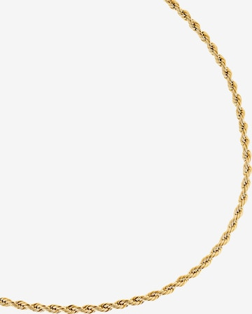 Heideman Kette 'Caius' in Gold
