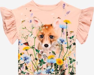 Molo T-Krekls 'Rayah', krāsa - jauktu krāsu / rožkrāsas, Preces skats