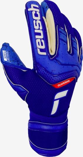 REUSCH Sporthandschuhe in blau / rot / weiß, Produktansicht