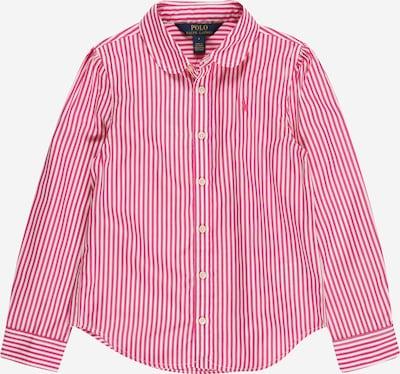 POLO RALPH LAUREN Bluse in pitaya / weiß, Produktansicht