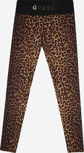 GUESS Leggings en marrón, Vista del producto