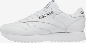 Reebok Classics Nízke tenisky - biela