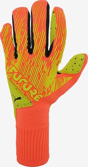 PUMA Handschuh in neongrün / schwarz: Frontalansicht