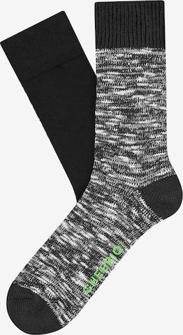 CHEERIO* Socks 'BOOT BUDDY' in Black