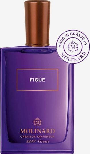 Molinard Eau de Parfum 'Figue' in transparent, Produktansicht