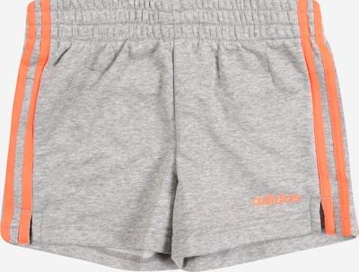ADIDAS PERFORMANCE Shorts in grau: Frontalansicht