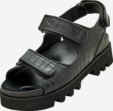 EDITED Sandaler 'Taylah' i svart