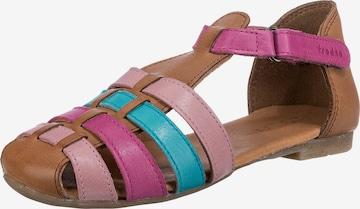 Froddo Sandalen in Braun