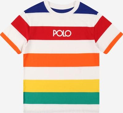 Tricou Polo Ralph Lauren pe mai multe culori, Vizualizare produs