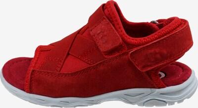 Pio Sandale in rot, Produktansicht