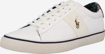 Polo Ralph Lauren Baskets basses 'SAYER' en mastic / caramel / gris chiné / blanc, Vue avec produit