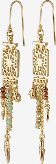 Pilgrim Boucles d'oreilles 'Legacy' en marron / or / menthe, Vue avec produit