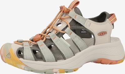 KEEN Sandales en beige / gris / gris foncé, Vue avec produit