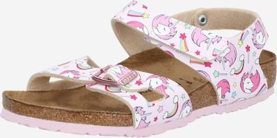 BIRKENSTOCK Open schoenen 'Colorado' in de kleur Gemengde kleuren / Rosa, Productweergave