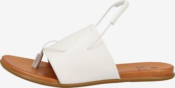 ILC Sandalen in Weiß