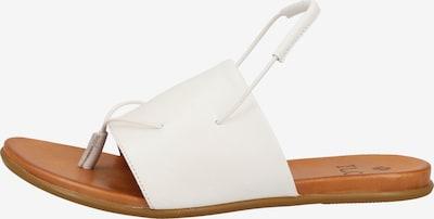 ILC Sandalen in weiß, Produktansicht