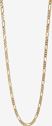 Nordahl Jewellery Chaîne 'Figaro52' en or, Vue avec produit