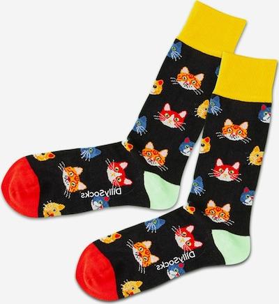 DillySocks Socken 'Nightly Kitten' in mischfarben / schwarz, Produktansicht