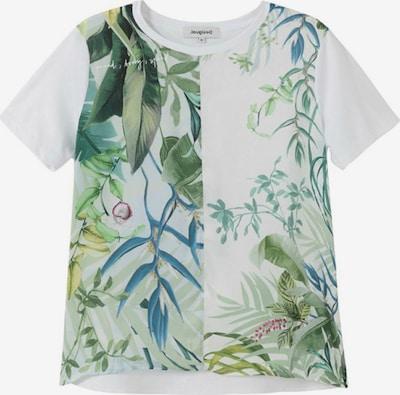 Desigual T-shirt 'BUDAPEST' i ljusblå / grön / vit, Produktvy