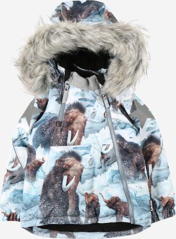 Molo Talvitakki 'Hopla Fur' värissä sininen
