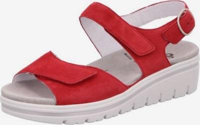 SEMLER Sandale in rot, Produktansicht