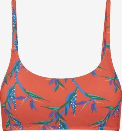 Shiwi Top de bikini en azul / verde / lila oscuro / rojo anaranjado, Vista del producto