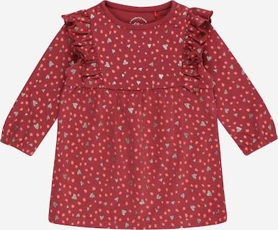 s.Oliver Kleid in mischfarben / pink, Produktansicht